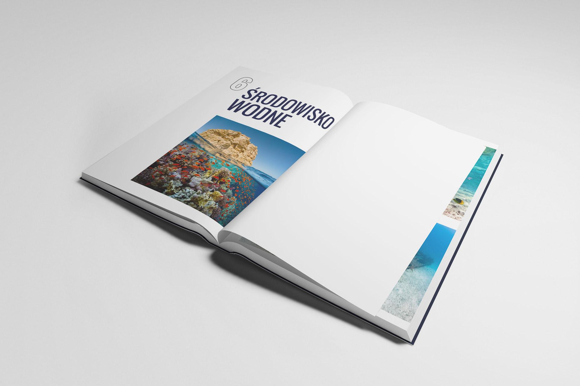 International Diving Federation